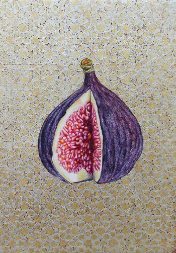 Fig | Soraya Ghazi Lutes
